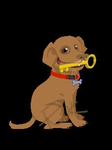 Friendnook Dog